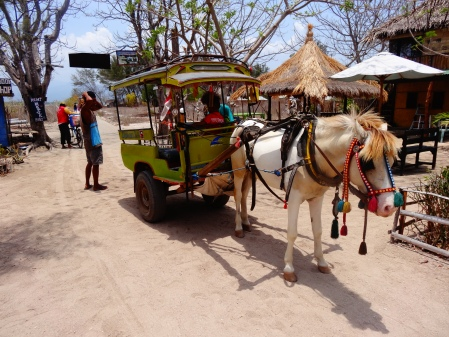 My taxi driver on Gili