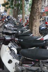motorbikes, everywhere