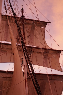 sails up...